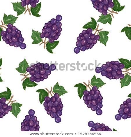 Purple · виноград · шаблон · листьев · иллюстрация - Сток-фото © sifis