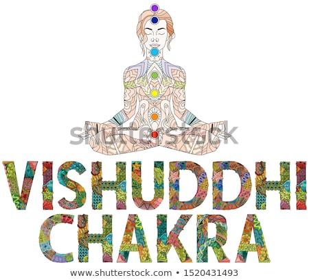 chakra · illustratie · vector · vierde · hart - stockfoto © natalia_1947