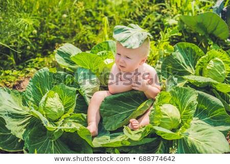 Baby vergadering kool kinderen liefde kind Stockfoto © galitskaya