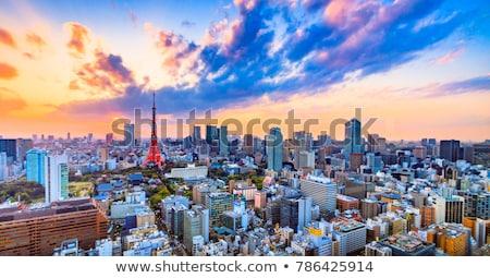 Tokió Japán légi városkép kép naplemente Stock fotó © rudi1976