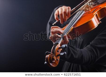 Attractive professional female violinist on black Stock photo © Giulio_Fornasar