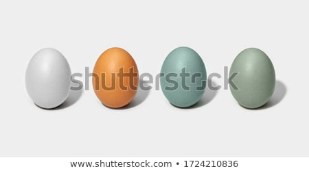 Group of eggshells and eggs Stock photo © Ansonstock