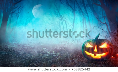 halloween background with pumpkins bats and full moon stock photo © wad