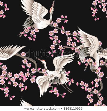 日本語 鳥 パターン 伝統的な 着物 ペア ストックフォト © sahua
