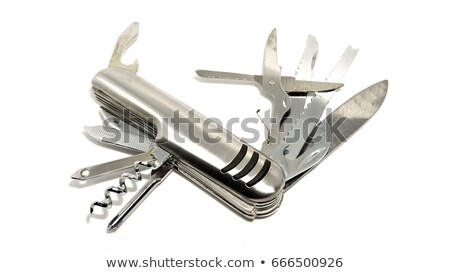 Tutti scopo coltello esercito tipo Foto d'archivio © posterize