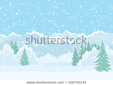 Snowy Landscape with Mountain in Far Distance Stock photo © bobbigmac