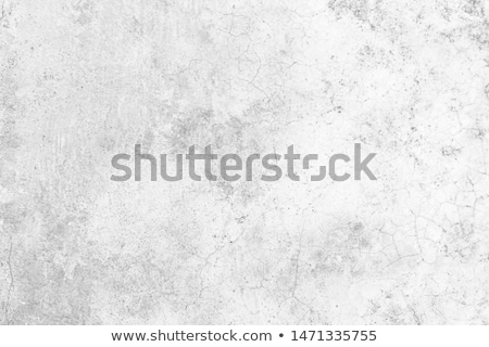 mottled stone background Stock photo © prill