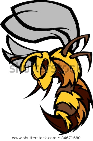 graphic vector image of a wasp or yellowjacket mascot with fight stock photo © chromaco