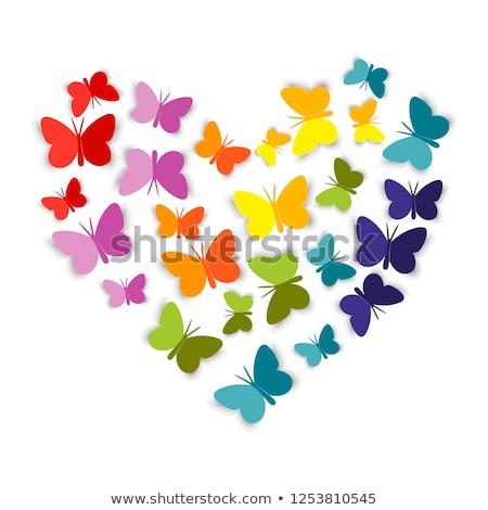 Schmetterling Papier Frühling Zeichen Geschenk fliegen Stock foto © djemphoto