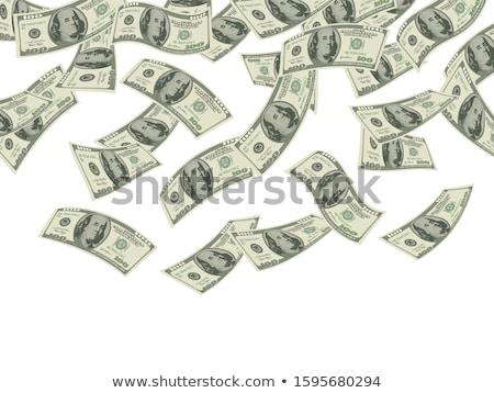 zuhan · dollár · vektor · akta · rétegek · piac - stock fotó © hauvi