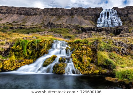 dynjandi   westfjords iceland stock photo © tomasz_parys