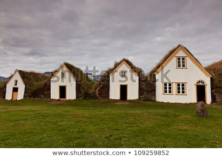 öreg · farm · Izland · északi · fű · fa - stock fotó © hofmeester