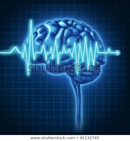 Emberi agy egészség ekg ellenőrzés elektomos ok Stock fotó © Lightsource