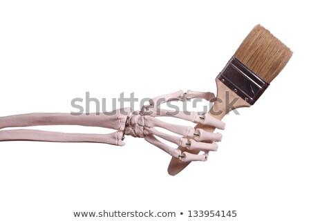 skeleton hand holding paint brush stock photo © pterwort