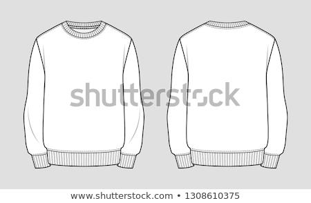 фундаментальный · свитер · шаблон · объекты · детали - Сток-фото © Bytedust