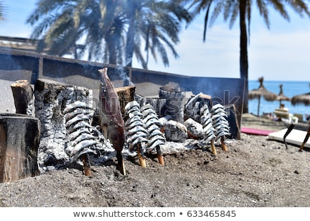 Fire and fishing on the beach Stock photo © Undy