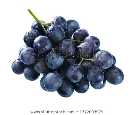 cluster of  blue grapes Stock photo © taden