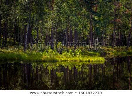 Göl kasaba bölge güneş doğa manzara Stok fotoğraf © artlens