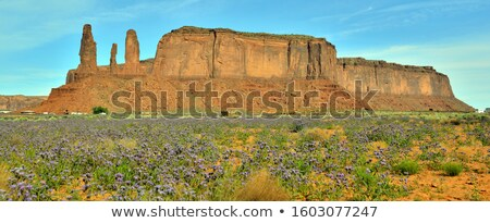 The Buttes three sisters are a giant sandstone formations in the Stock photo © meinzahn