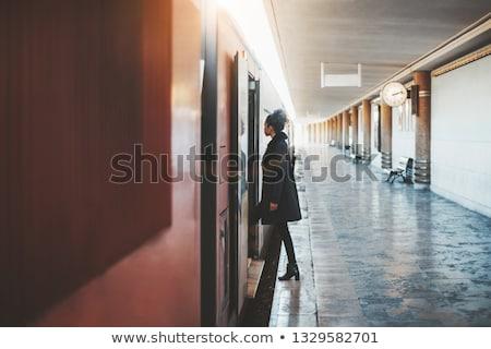 Stockfoto: Trein · Open · vol · snelheid · landschap