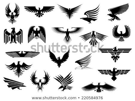 орел · пальто · оружия · кадр · птица · черный - Сток-фото © genestro