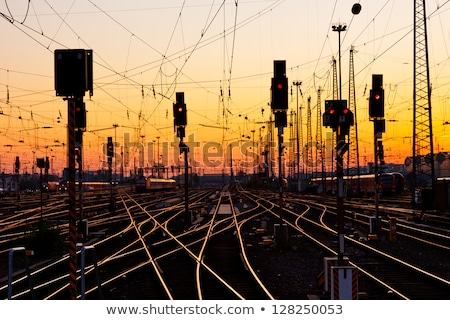 railway tracks in the evening stock photo © skylight