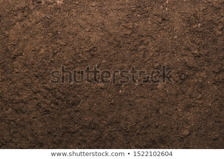 земле · песок · пустыне · юго-запад - Сток-фото © jenbray
