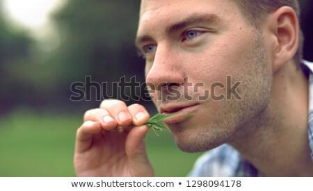 mode · man · baard · roken · jonge - stockfoto © feedough