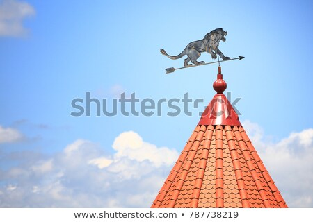 флюгер здании небе синий золото Сток-фото © njnightsky