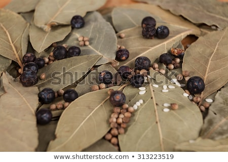 Dry leaves of bay leaf with seeds of black pepper, a nice photo for culinary magazines Stock photo © mcherevan