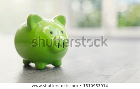 Green piggy bank for money Stock photo © ozaiachin