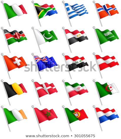 İsviçre Kenya bayraklar bilmece yalıtılmış beyaz Stok fotoğraf © Istanbul2009