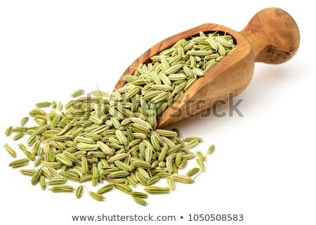 макроса органический фенхель семян изолированный Сток-фото © ziprashantzi