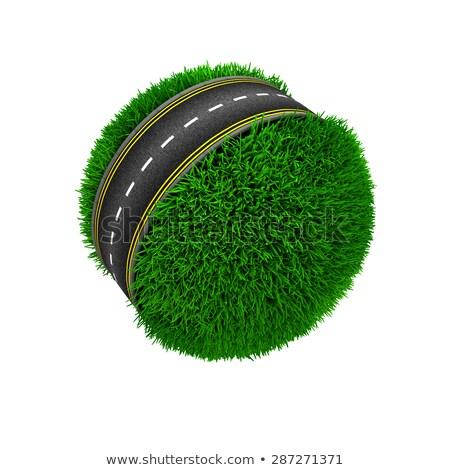 weg · rond · grasachtig · wereldbol · 3d · render · gras - stockfoto © kjpargeter