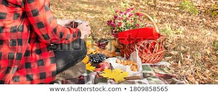 Mensen picknick outdoor vrouw meisje glimlach Stockfoto © racoolstudio