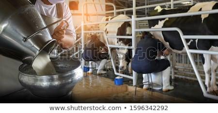 Фермеры сельскохозяйственных животных иллюстрация трава работу пейзаж Сток-фото © bluering