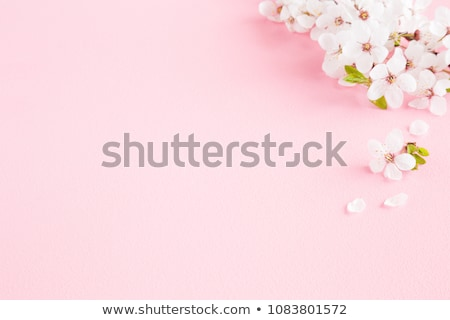 An empty template with blooming flowers Stock photo © bluering