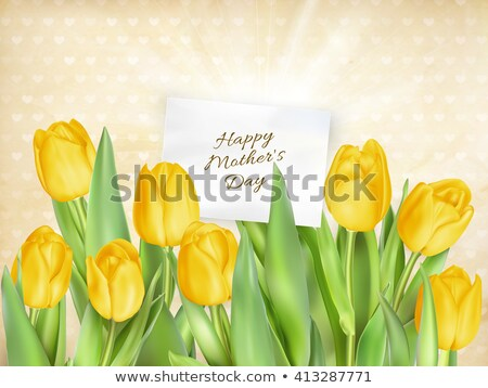 tulip flowers as a holiday postcard eps 10 stock photo © beholdereye