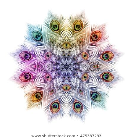 孔雀 · 明るい · 羽毛 · 孤立した · 実例 · すごい - ストックフォト © blackmoon979