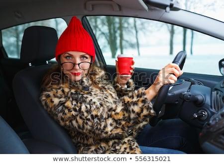 Güzel bir kadın kürk kırmızı şapka kahve kırmızı dudaklar Stok fotoğraf © vlad_star