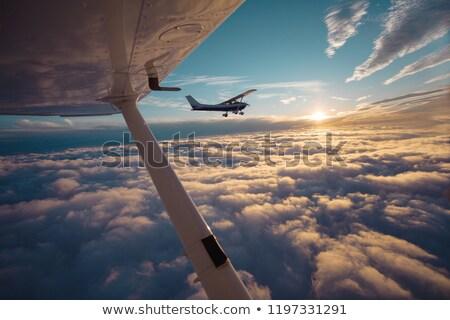Pilota piccola impresa piano aereo giovane cabina Foto d'archivio © artfotodima