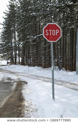 nieve · cubierto · naturaleza · montana · signo - foto stock © monkey_business