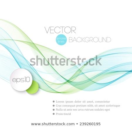Streszczenie dymny fale szablon broszura projektu Zdjęcia stock © fresh_5265954