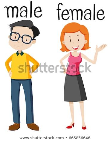 Tegenover mannelijke vrouwelijke illustratie man achtergrond Stockfoto © bluering