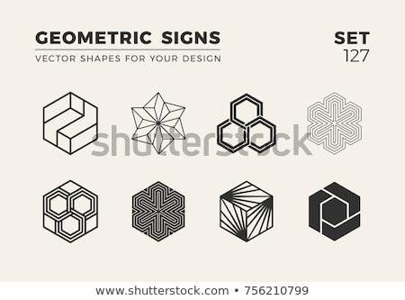 abstract hexagonal logo concept design Stock photo © SArts