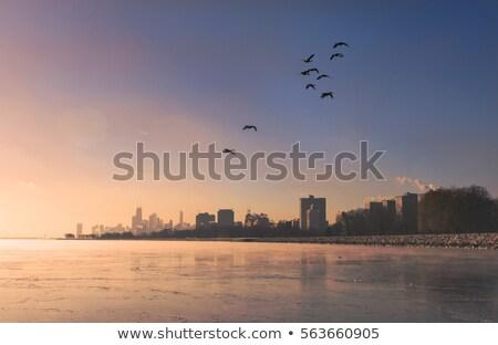 Kış Chicago ufuk çizgisi gündoğumu Illinois ABD Stok fotoğraf © benkrut