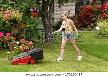 Women with push lawnmower Stock photo © IS2