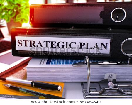 Stratégiai tervez kék iroda mappa kép Stock fotó © tashatuvango