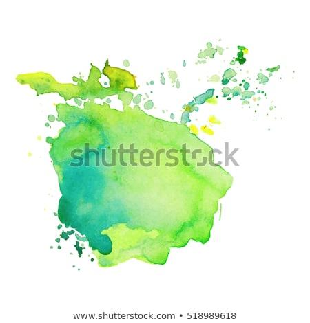 зеленый акварель окрашенный пятно изолированный белый Сток-фото © balasoiu
