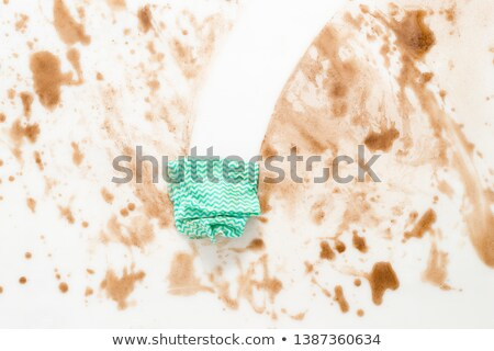 Housekeeper in dirty kitchen Stock photo © bluering